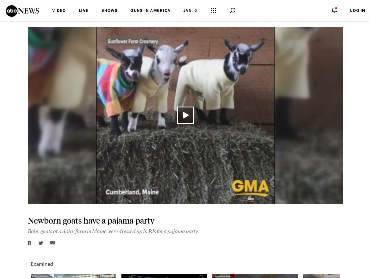WATCH:  Newborn goats have a pajama party