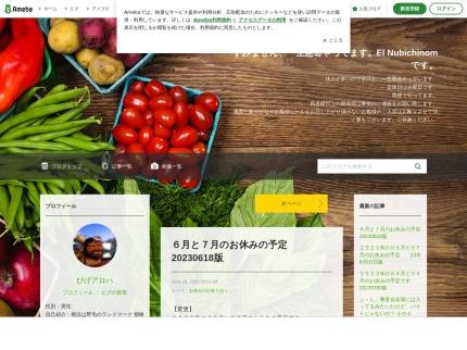 http://ameblo.jp/el-nubichinom/