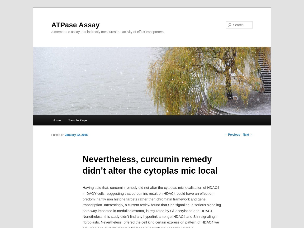 Nevertheless, curcumin remedy didn't alter the cytoplas mic …