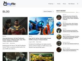 Online store Bigflix