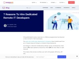 Why Should Hire Dedicated Remote IT Developers