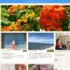 中野美奈子のブログ