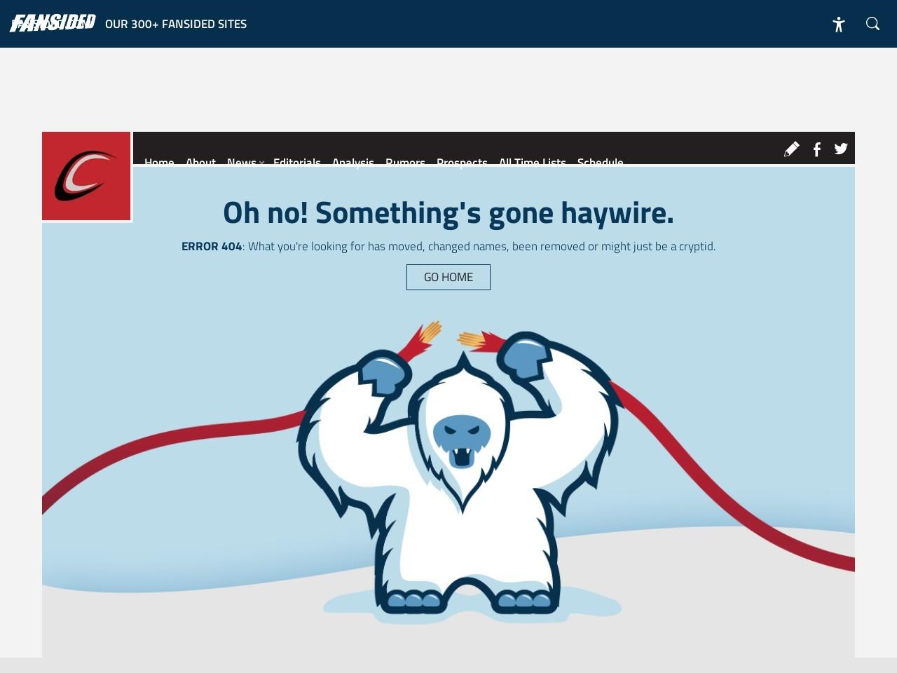 Carolina Hurricanes in Need of Leadership