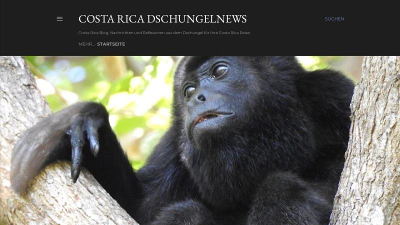 costa-rica-cocodrilo.blogspot.com Vorschau, Costa Rica Dschungelnews