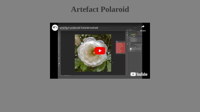 artefact polaroid  action photoshop