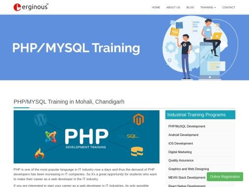 Php Industrial Training in Rajpura