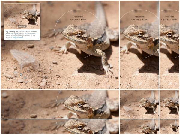 http://jonom.github.io/jquery-focuspoint/demos/grid/lizard.html