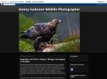 Wildlifephoto by Kenny Isaksson