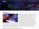 Hire Best Team for Aquarium Maintenance in Florida Keys!