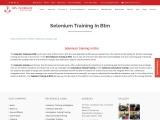 KRN informatix | Selenium training in btm