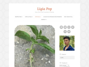 Ligia Pop using the Sight WordPress Theme