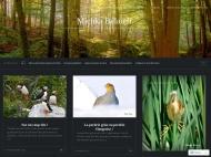 Traveler WordPress Theme example