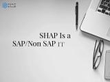 Shap – Technology Partner, SAP Integrations
