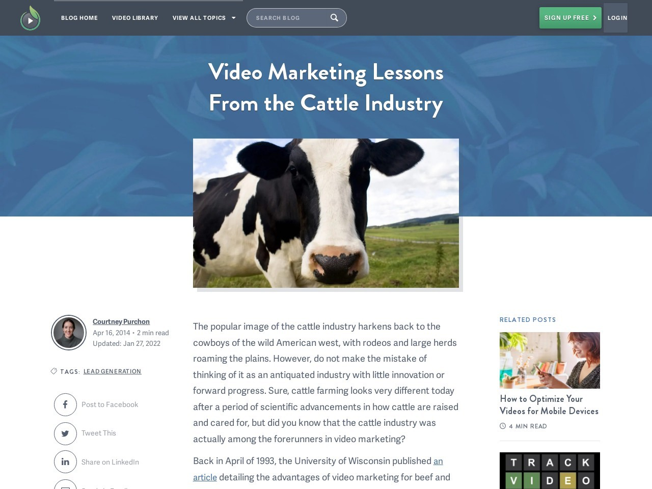 Video Marketing Lessons From the Cattle Industry