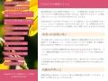 札幌時計台ギャラリーのイメージ