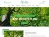 Tree TrimmingSuffolk County NY, Tree Spraying Suffolk County NY