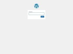 401krace