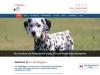 Toronto Dog Walker – Dog Walker Rates Toronto – Dog Walkers Toronto