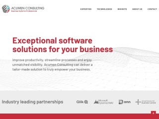 Screenshot for acumenconsulting.co.nz