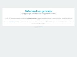 Ballonnenparade.nl screenshot