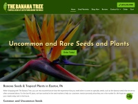 The Banana Tree Fast Coupon & Promo Codes