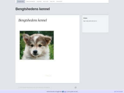 www.bengtshedenskennel.n.nu