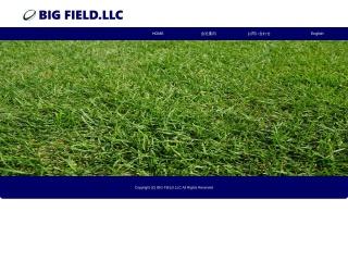 Screenshot for bigfield.co.nz