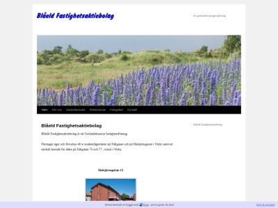 www.blaeldfastighet.se