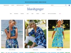 Blueginger coupon codes February 2018