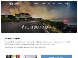 Screenshot for bluff.co.nz
