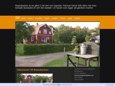 www.bringholm.n.nu