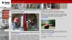 www.burginfo.de Vorschau, Burgeninformationssystem (BINSY)
