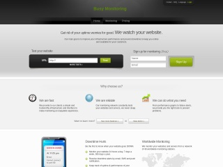 Screenshot for busy.co.il
