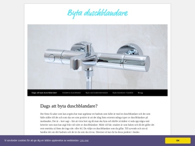 www.bytaduschblandare.se