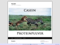 www.casein.n.nu