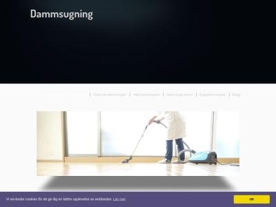 www.dammsugning.net