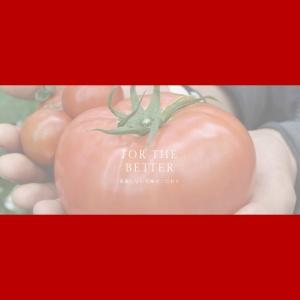 【 株式会社デアルケ 】三重県紀北町 | 200%トマトジュース・完熟トマト