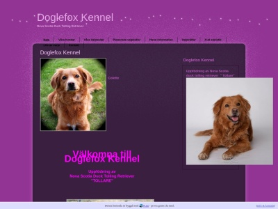 www.doglefox.n.nu