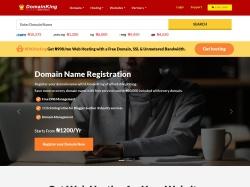 DomainKing Nigeria