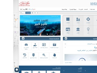 Screenshot for dxbpp.gov.ae