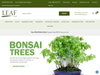 Eastern Leaf, Inc. Coupon Codes & Discounts
