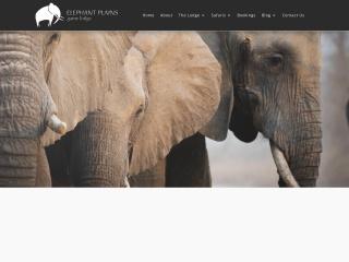 Screenshot for elephantplains.co.za