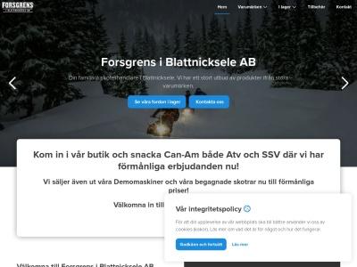 www.forsgrensbilservice.com