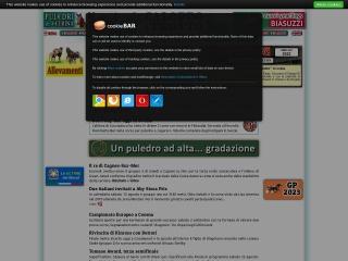 Screenshot del sito gaet.it