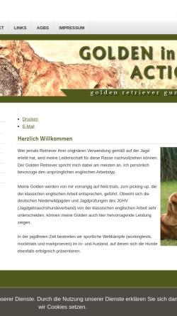 Vorschau der mobilen Webseite www.golden-in-action.de, Golden in Action