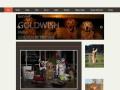 www.goldwish.n.nu