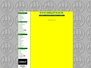 Zrzut ekranu strony goralzywiec.pl