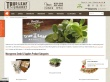 $4.95 Flat Rate Shipping on Orders Under $75 at GrowingMicrogreens