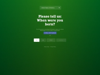 Screenshot for heineken.com