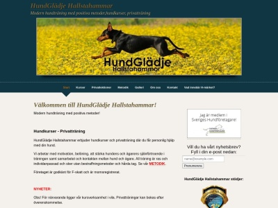www.hundgladjehallstahammar.se